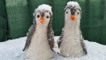 Hurra-bei uns schneits!