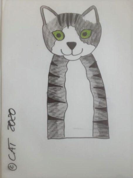 Zeichnung Katze Minka